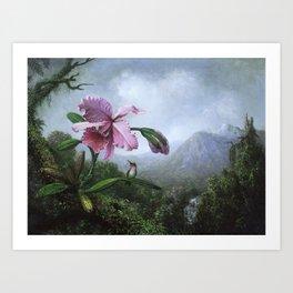 Hummingbird & Orchid Art Print