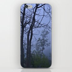 Dreaming... Into the woods iPhone & iPod Skin