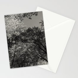 At peace - forest Stationery Cards