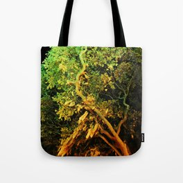 The Secret Haven of Tisiphone Tote Bag