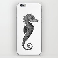 seahorse iPhone & iPod Skins featuring Seahorse by silb_ck
