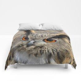 Hello ?? Comforters