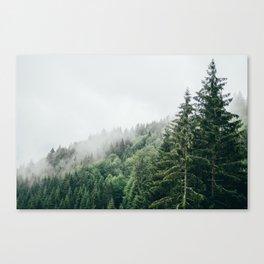Mist Fog Forest Canvas Print