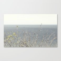 Branches at the sea Canvas Print