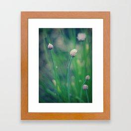 The Joy Of Spring Framed Art Print