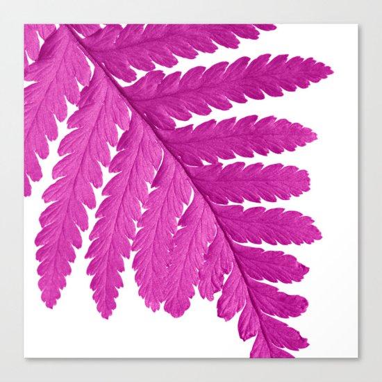 pink fern leaf I Canvas Print