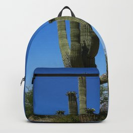 In The Sonoran Desert Backpack