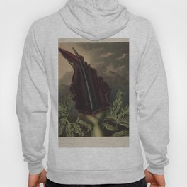 The Dragon Arum Temple of Flora Hoody