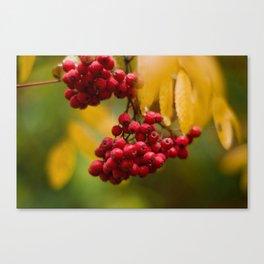 Bright Autumn VIII Canvas Print