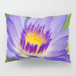 Pūpūkea Garden Breeze Pillow Sham