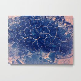 nature paints serie 02 Metal Print