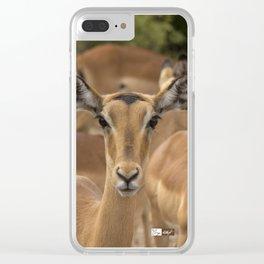 CW-001-Gazelle Clear iPhone Case