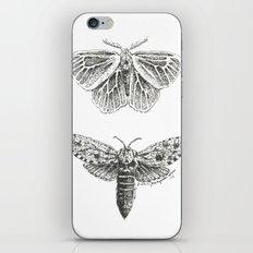 Moth Study iPhone & iPod Skin