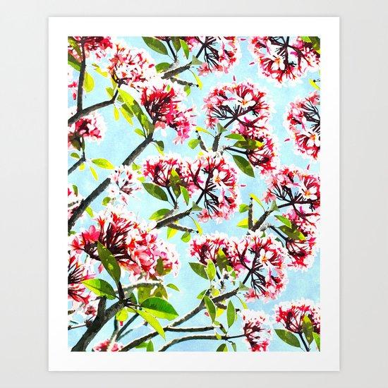 Frangipani #society6 #decor #buyart Art Print