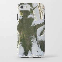 The Old Beech Tree iPhone Case