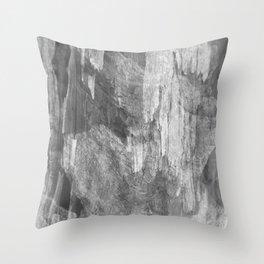 #3 Throw Pillow