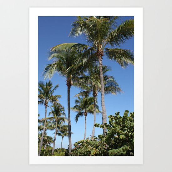 """In the Tropics"" Art Print"