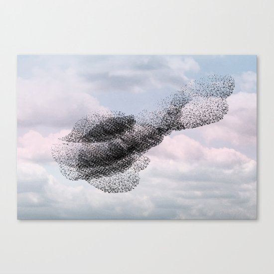 Swooping and looping version 2 Canvas Print