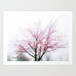 Red Blossoms in the Fog Art Print