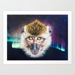 Macaque with Aurora Borealis Art Print