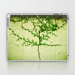 Ivy Wall Laptop & iPad Skin