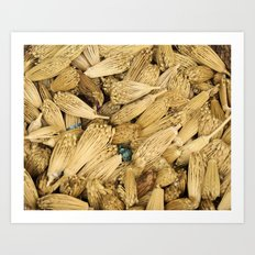 Dried Herbs Art Print