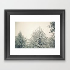 Sugar Coated Framed Art Print
