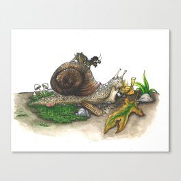 Little Worlds: Snail and Cricket Canvas Print