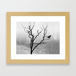 Black Crow in Foggy Forest A118 Framed Art Print