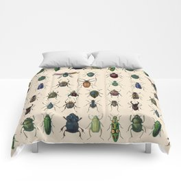 Insects, flies, ants, bugs Comforters