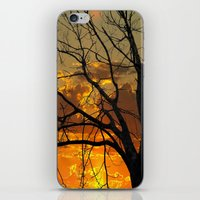 jewish iPhone & iPod Skins featuring Sunset Tree by Brown Eyed Lady