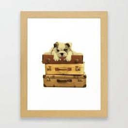 Vintage Bulldog  Framed Art Print