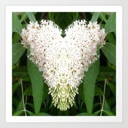 Buddleia Heart Art Print