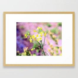 yellow wild flower Framed Art Print