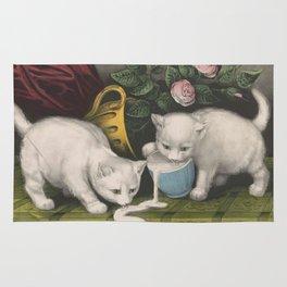 cute kitten 3- Anonymous - Little white kitties -pet,whikers,cat,kitty,kitten Rug