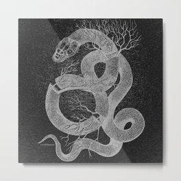 Snakes & Stones Metal Print