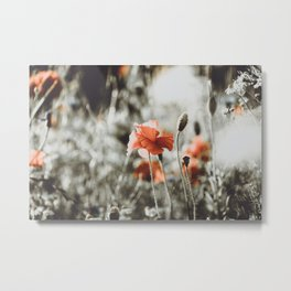 Grunge Style Red Poppy Photo   Flower Photography   Moody Red Poppies  Metal Print