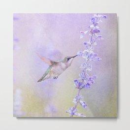 Hummingbird On Pastel Purple Lavender Flower Metal Print
