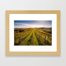 Vineyards in autumn Framed Art Print