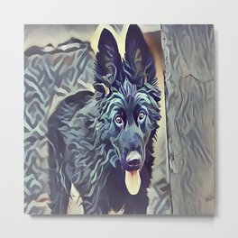 The Belgian Shepherd Metal Print