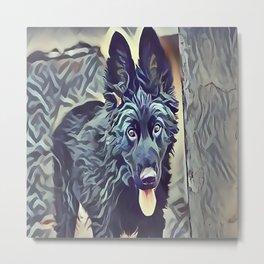 The Belgian Shepherd Metal Print