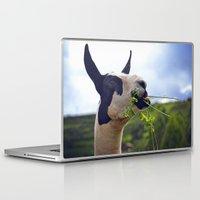 llama Laptop & iPad Skins featuring Llama by Jimmy Duarte