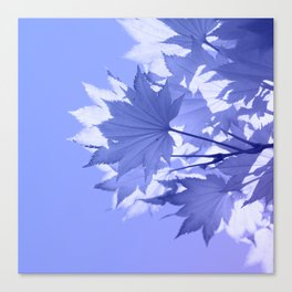 Purple Bough Canvas Print