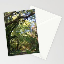 Tree tunnel at Wye Island | Eastern Shore, MD Stationery Cards