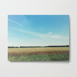 alabama wheat. Metal Print