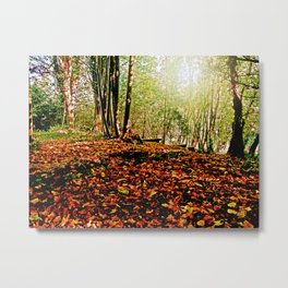 Autumn carpet. Metal Print