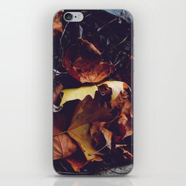 Autumn  iPhone Skin