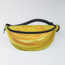 Beautiful Yellow Rose Flower on Black Background Fanny Pack