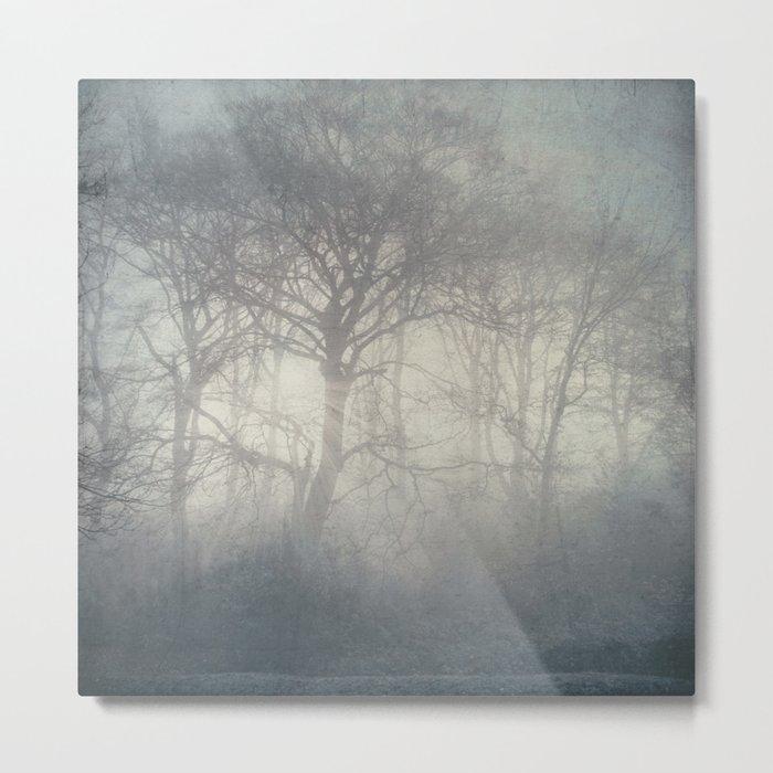 ghosts of November - trees in fog Metal Print