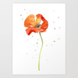 Red Poppy Painting Watercolor Art Print
